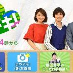 TBS系「はやドキ!」