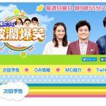 日本テレビ系「誰だって波瀾爆笑」