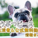 テレビ東京「どうぶつピース!!」出演タレント&ナレーター一覧