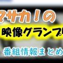 TBS「マサカの映像グランプリ」ナレーター一覧