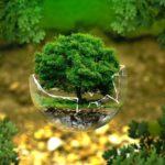 地球環境のイメージ
