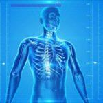 人体ミステリー、医療、解剖のイメージ